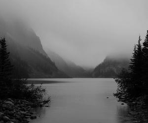 black and white, nature, and lake image