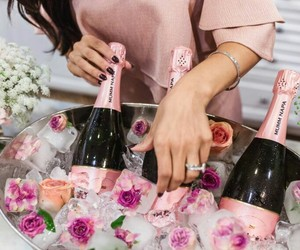 champagne, drink, and france image