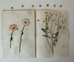 flowers, book, and stars image