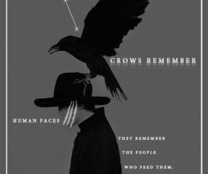 leigh bardugo, six of crows, and nina zenik image