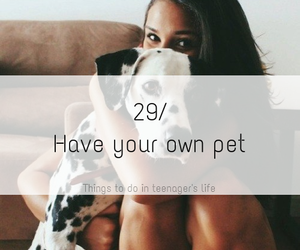 animals, we heart it, and follow me image