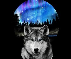 galaxy, tattoo, and wolf image