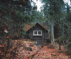 house, nature, and autumn image