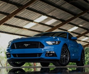 blu, cars, and ford image