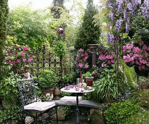 garden, flowers, and beautiful image
