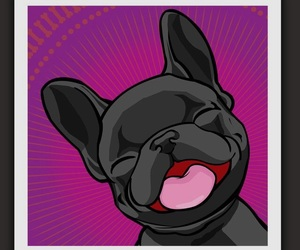 fun, pug, and cute image