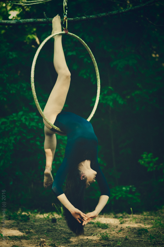 aerial, hoop, and lyra image
