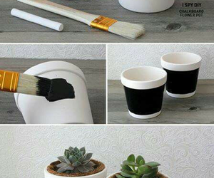 black, plant, and cup image