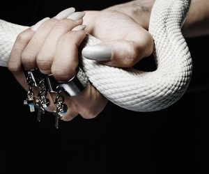 fantasy, snake, and power image