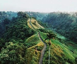 belleza, verde, and naturaleza image