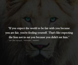 inspiration, lion, and wahidx3 image