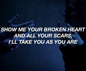 quotes, scars, and Lyrics image