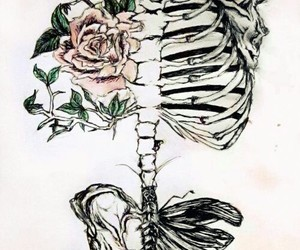 skeleton, flowers, and art image
