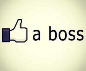 like a boss image