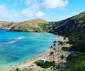 beach, hawaii, and hanauma bay image