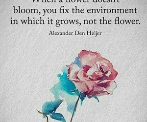 aesthetic, quote, and flower image