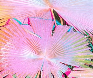 pink, summer, and tropical image