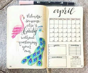 bullet, journal, and planner image