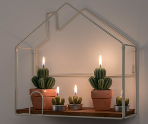 cactus, candle, and decoration image