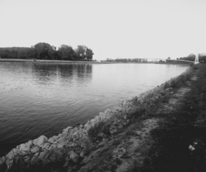 black&white, nature, and river image