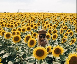 flowers, travel, and tumblr image