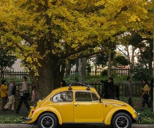car, yellow, and tree image