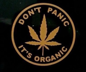 marijuana, weed, and organic image