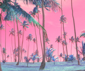 pink and summer image