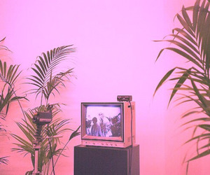 tv, green, and plants image