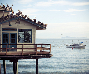 sea, house, and photography image
