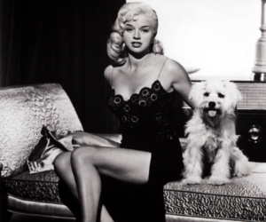 60s, blonde, and Diana Dors image