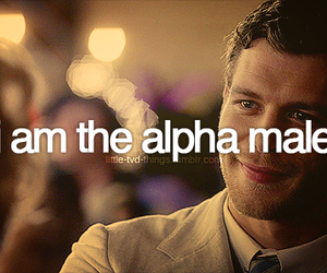 the vampire diares and klaus mikaelson image