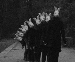 rabbit and scary image