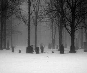 graveyard, black and white, and cemetery image