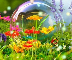 bubble, colorful, and green image