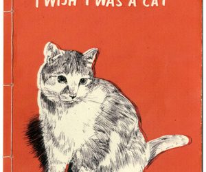 cat, wish, and quotes image