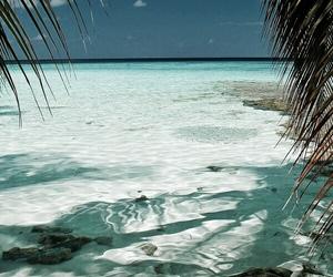 summer, beach, and ocean image
