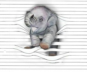 arte, dibujo, and elefante image