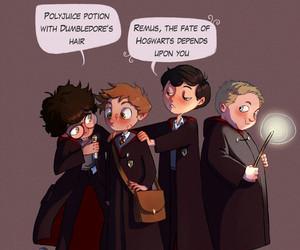 harry potter, dumbledore, and sirius black image