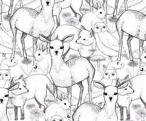deer, animals, and fox image