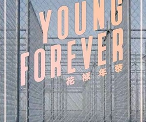 bts, young forever, and theme image