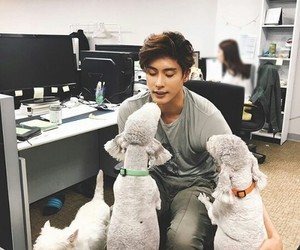 dogs and sung hoon image