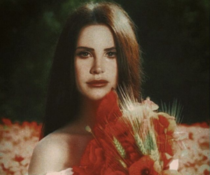 lana, ldr, and ldredit image