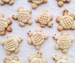 peanut butter, turtles, and peanut butter cookies image