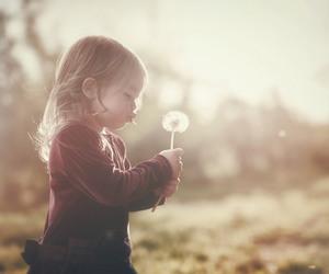 50mm, dandelion, and art image