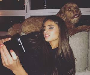 taylor hill, model, and dog image