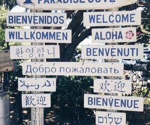 Aloha, beach, and languages image