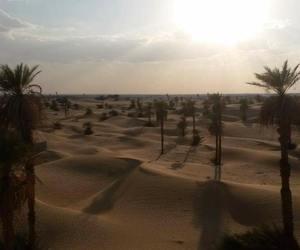 africa, desert, and arabs image