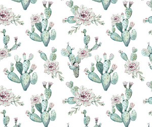 background, pattern, and succulent image