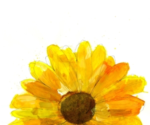 daisy, illustration, and flowers image